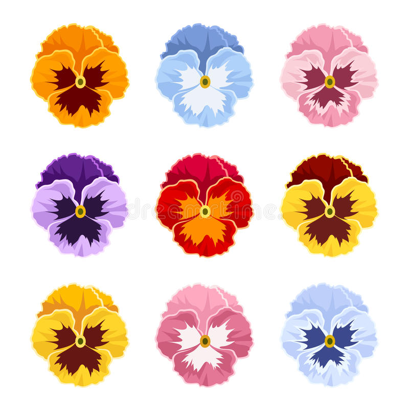 Free Colorful Pansy Flowers. Vector Illustration. Stock Photos - 90663343