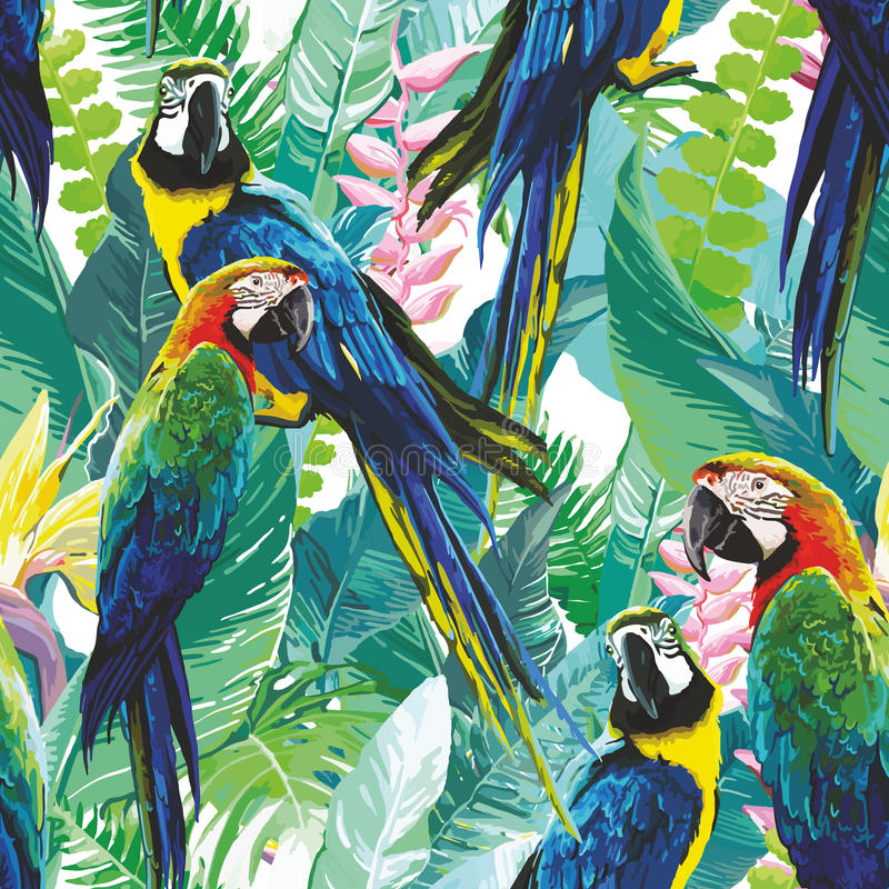 Colorful parrots and exotic flowers royalty free illustration