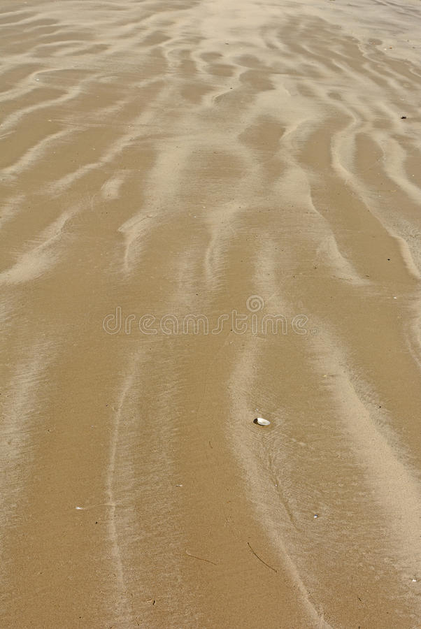 Colorful Patterns on a Sandy Beach. On Padre Island National Seashore in Texas royalty free stock photos