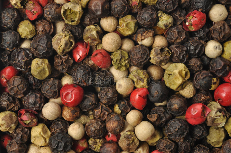 Download Colorful Pepper stock photo. Image of pepper, black, seeds - 16750004