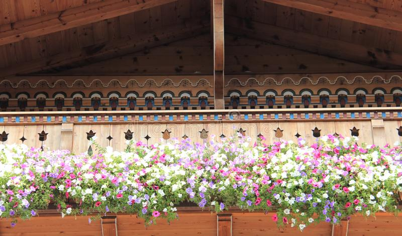 Wooden Balcony With Blooming Colorful Petunias royalty free stock photos