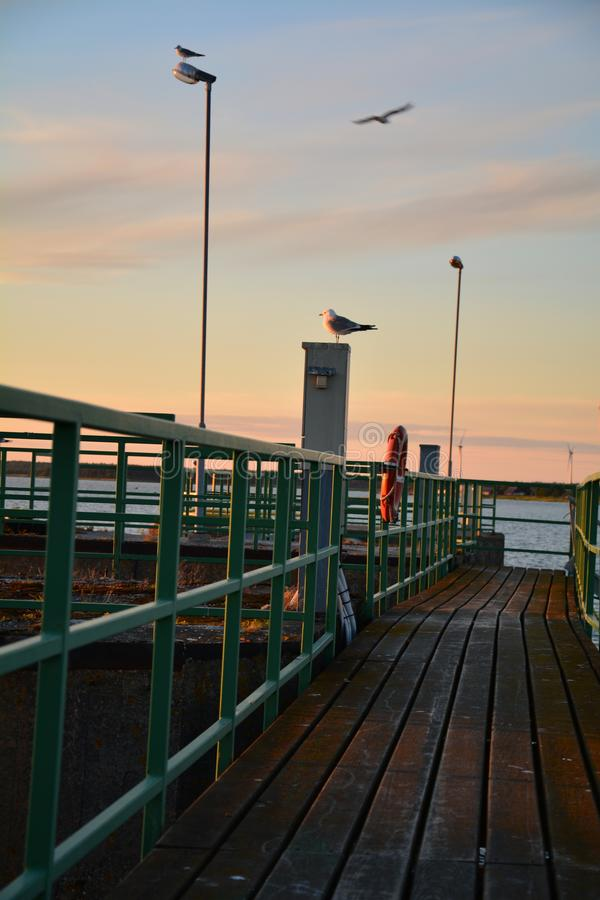 Beautiful seascape of east Estonia. A colorful pier in west Estonia with birds on it royalty free stock photo