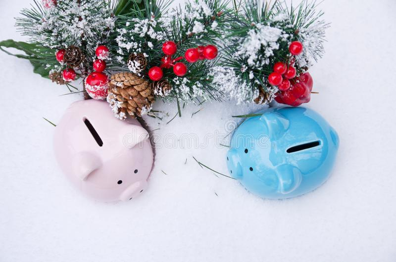 Colorful piggy Bank toys on snow with fir branch royalty free stock images