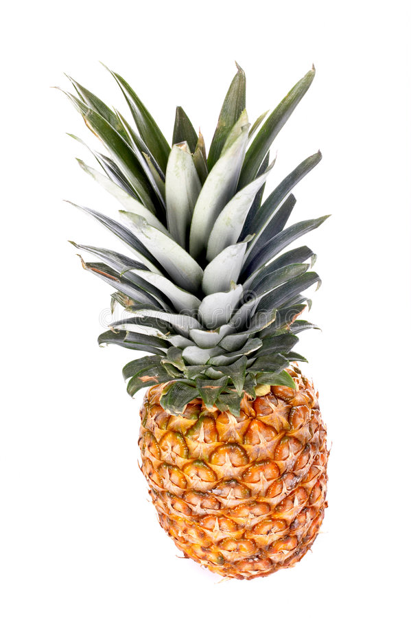 Colorful pineapple royalty free stock image