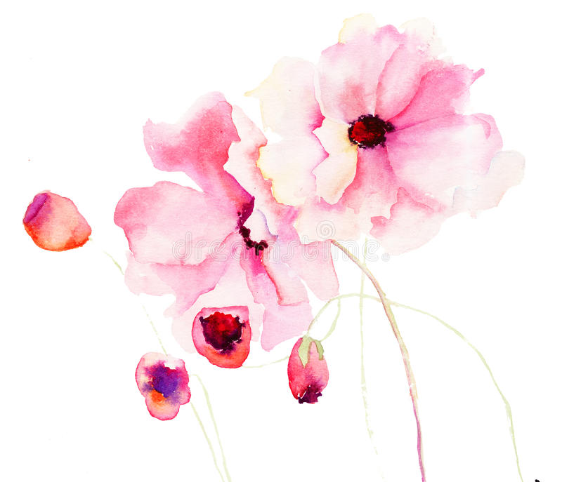 Download Colorful pink flowers stock illustration. Image of drawing - 27820733