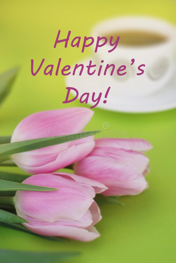 Colorful pink, fucsia Happy Valentine's Day background. Pink tulip flower on the green background. Greeting card stock image