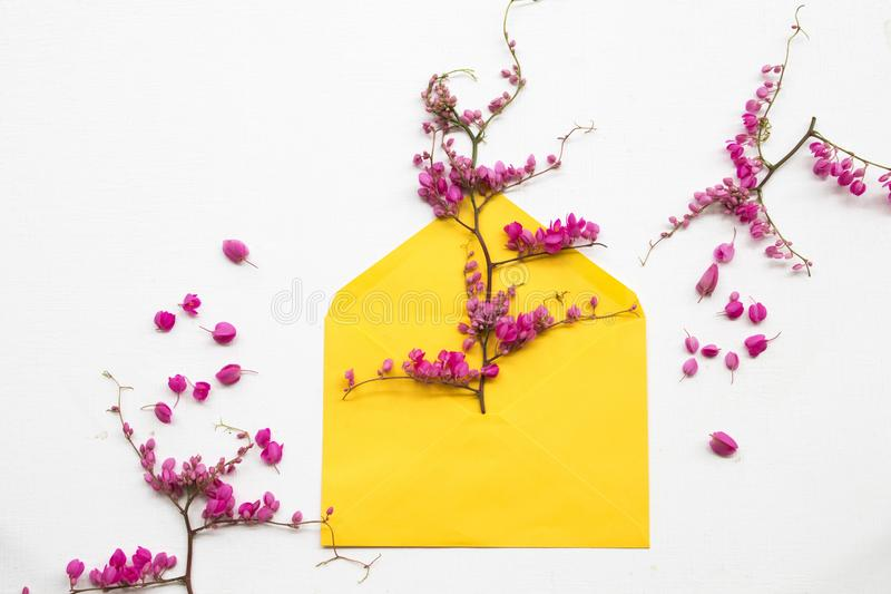 Colorful pink little flowers antigonon leptopus climber local flora arrangement flat lay postcard style. Colorful pink little flowers antigonon leptopus climber royalty free stock image
