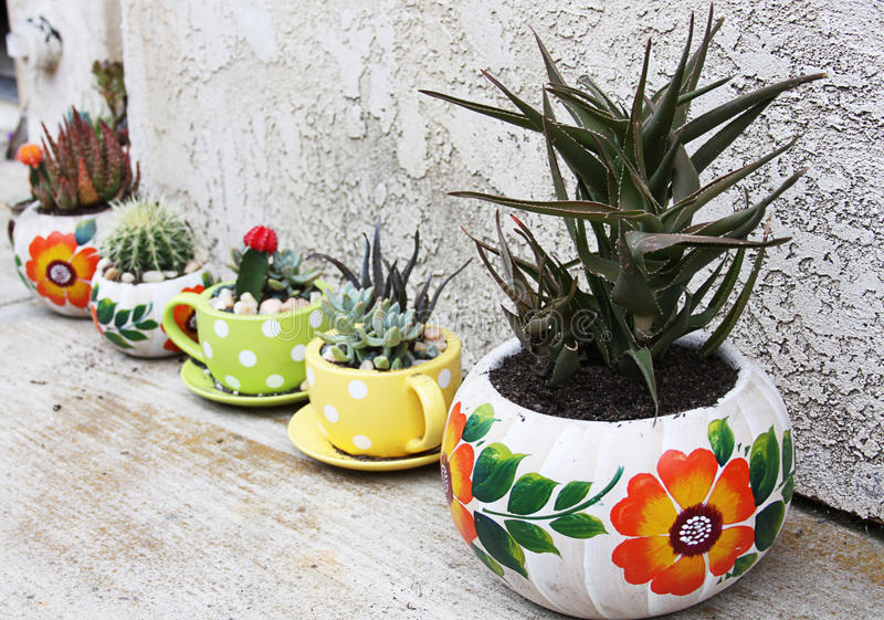 Colorful pots with cactus stock images
