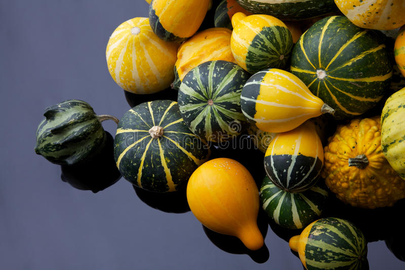 Download Colorful pumpkins stock image. Image of many, farm, decoration - 21468587