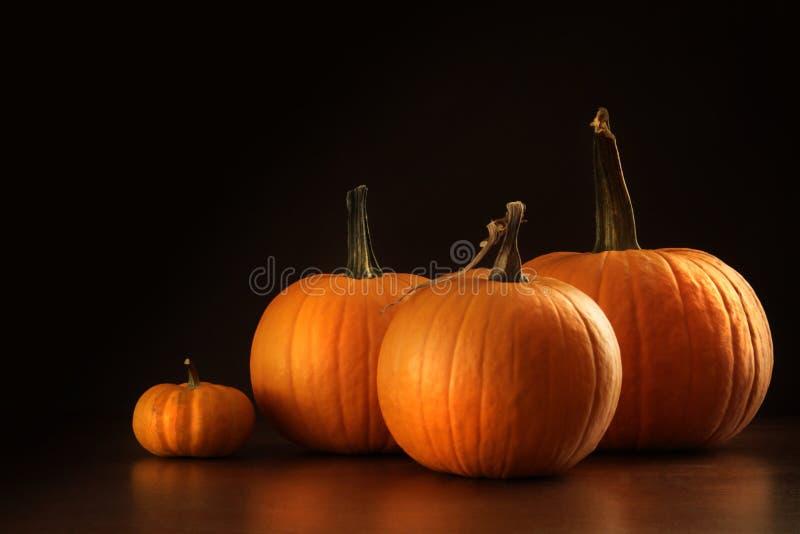 Colorful pumpkins on wood table on dark stock image