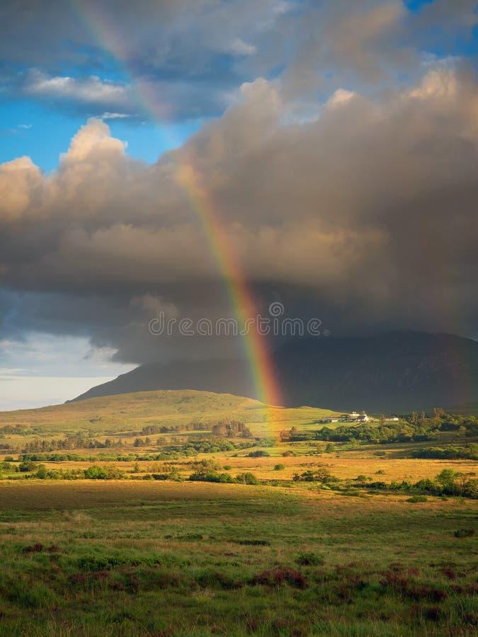 Colorful rainbow in a green field, Dramatic sky, Connemara loop, Ireland. Vertical image stock photos