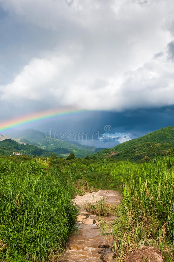Colorful rainbow over tropical mountain valley in the rain, scenic landscape green forest and stream in countryside stock photos