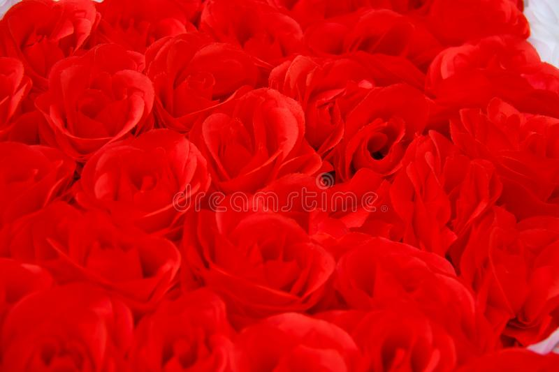Colorful red rose flowers background for wedding concept. Abstract, idea for invitation card, greeting, congratulation, love royalty free stock images