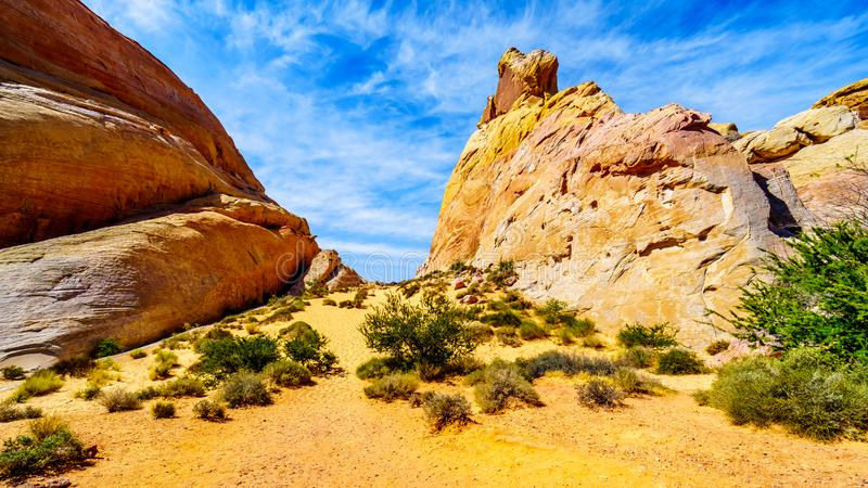 The colorful red, yellow and white sandstone rock formations at the White Dome Trail Head in the Valley of Fire. State Park in Nevada, USA royalty free stock photos