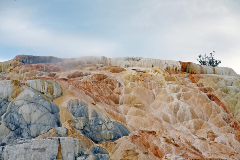 Colorful rock in yellowstone stock images