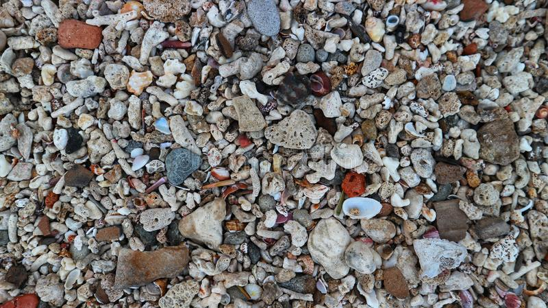 Colorful rocks mixed with dead shells, formed naturally from coral. royalty free stock image