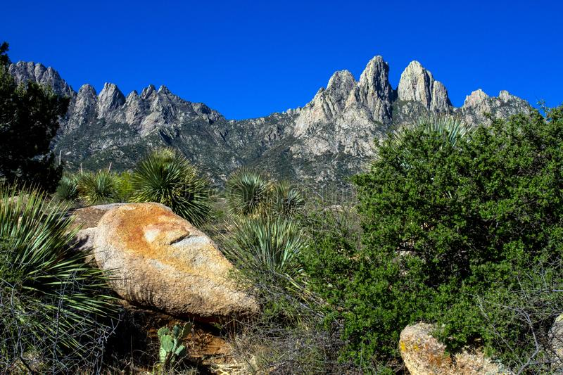 Colorful rocks, trees, and stands of yucca enhance Organ Mountains-Desert Peaks National Monument in New Mexico. Colorful rocks, trees, and stands of yucca stock photos