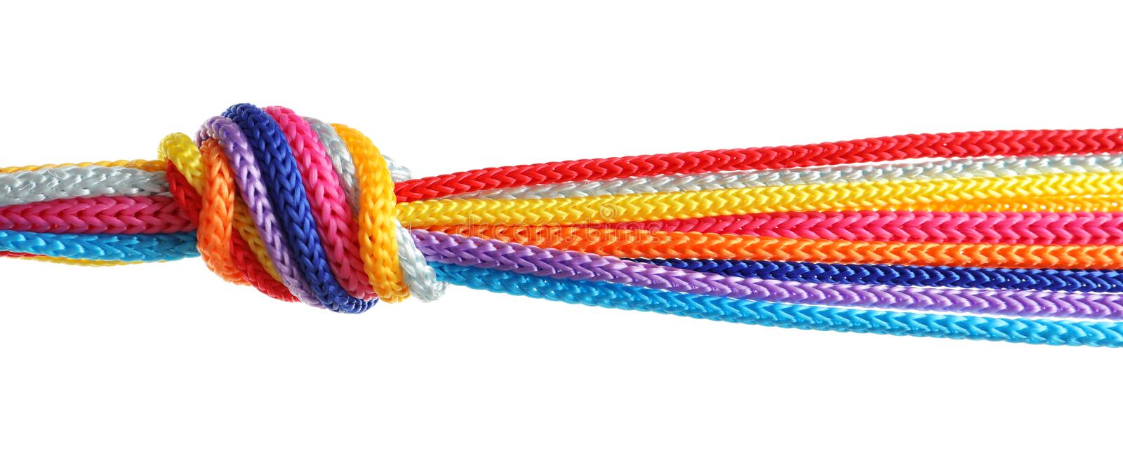 Colorful ropes tied together with knot royalty free stock image