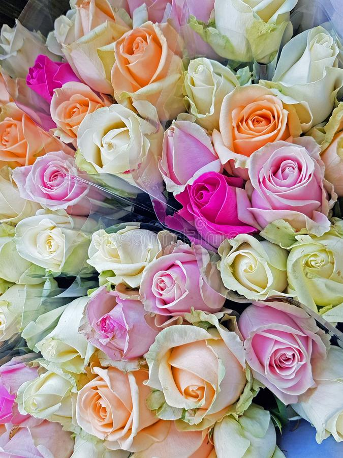 Beautiful bouquet of summer roses royalty free stock photography