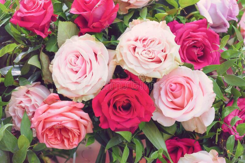 Colorful roses bouquet, romantic flower arrangement Valentine day, wedding decoration, postcard stock photography