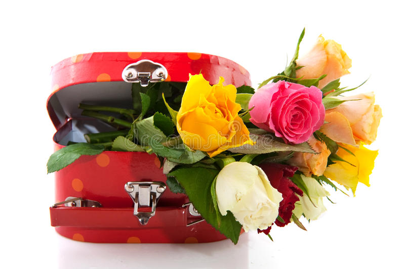 Colorful roses in red suitcase