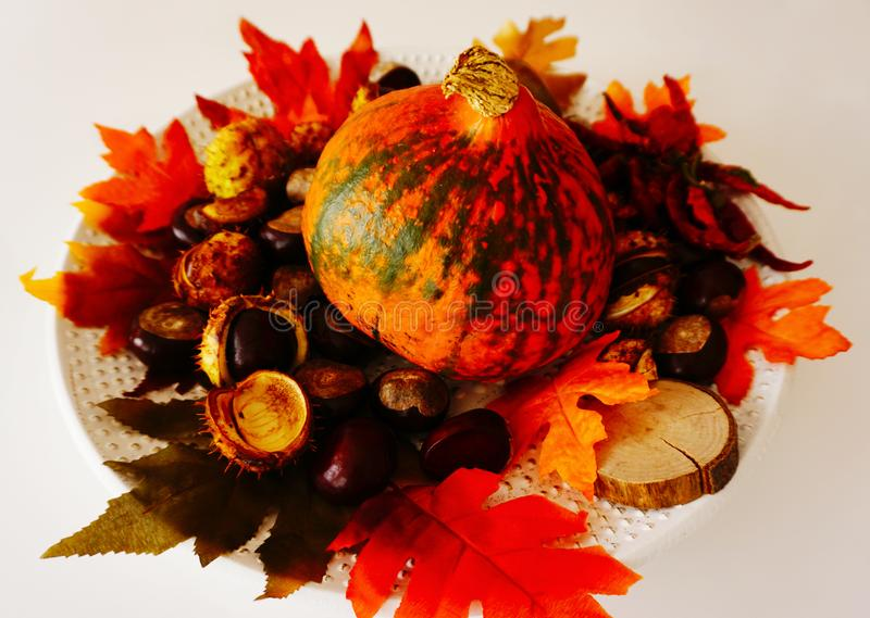 Colorful and rustic background with red pumpkin, peppers, chestnut and fall leaves on the plate. Colorful and rustic decorative background with red pumpkin royalty free stock images