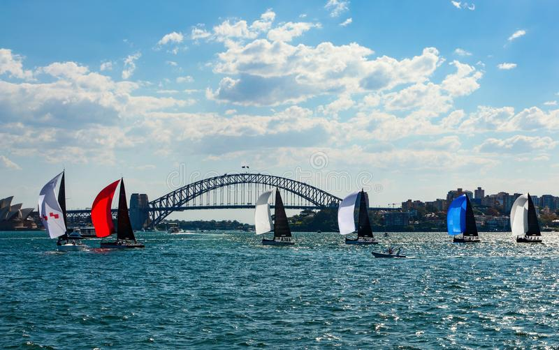 Colorful sailboats with spinnakers crossing Sydney Harbor in front of the iconic bridge in the background. A procession of colorful sailboats glides gently stock photos