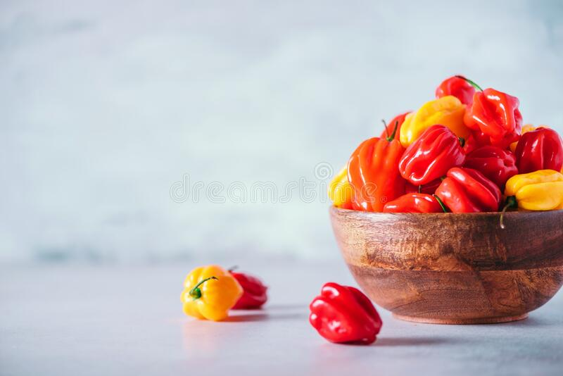 Colorful scotch bonnet chili peppers in wooden bowl over grey background. Copy space. Colorful scotch bonnet chili peppers in wooden bowl over grey background stock photo