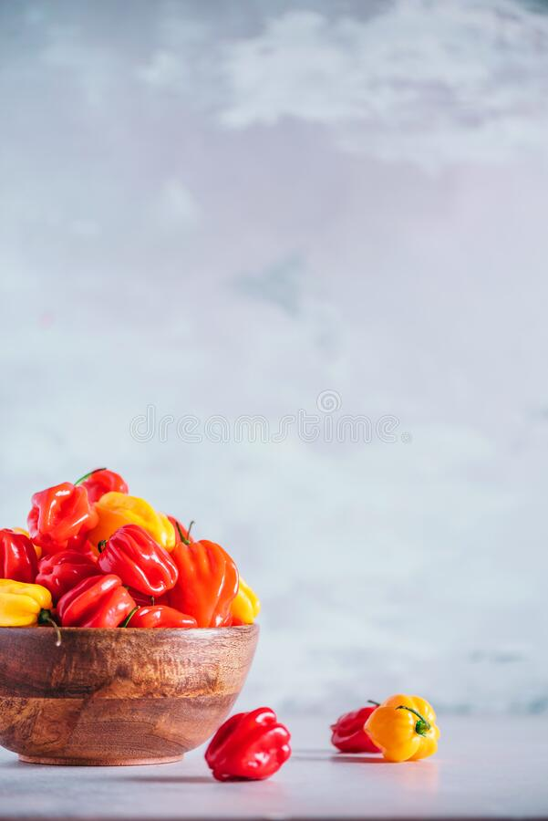 Colorful scotch bonnet chili peppers in wooden bowl over grey background. Copy space. Colorful scotch bonnet chili peppers in wooden bowl over grey background stock images