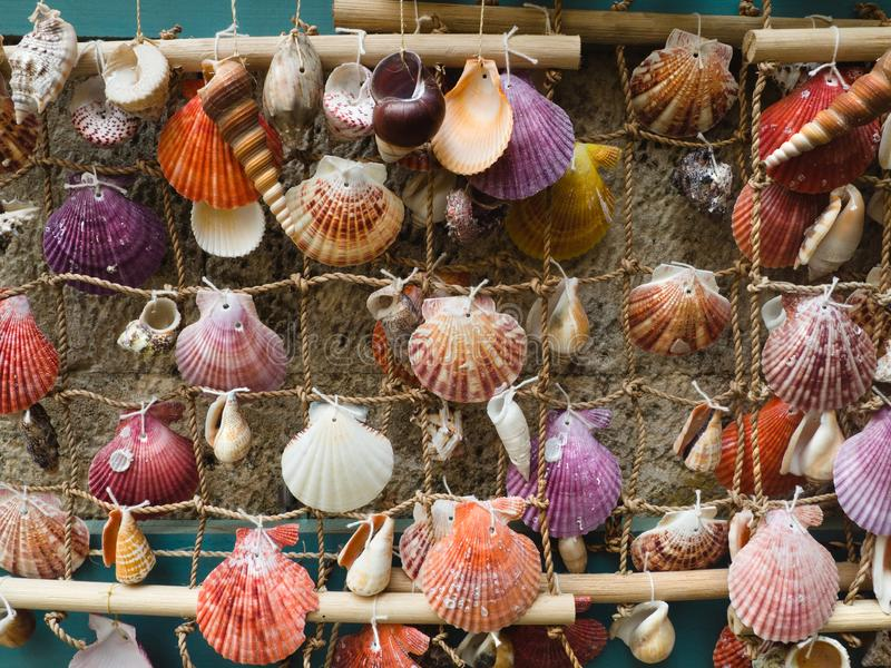 Colorful sea shells tied to rope net - homemade decorations royalty free stock photo