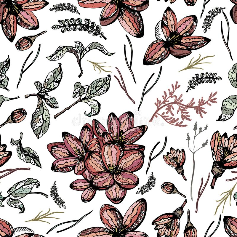 Colorful seamless pattern with floral elements and white background vector illustration