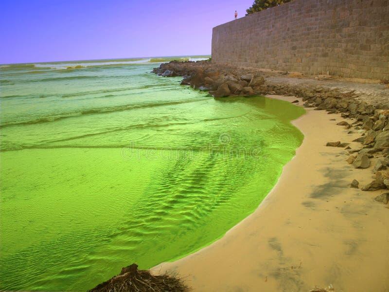 Colorful seaside. royalty free stock image