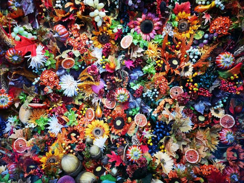 Colorful seasonal flowers - decorative arrangement. Colorful seasonal flowers and slices of dried oranges- decorative arrangement royalty free stock photos