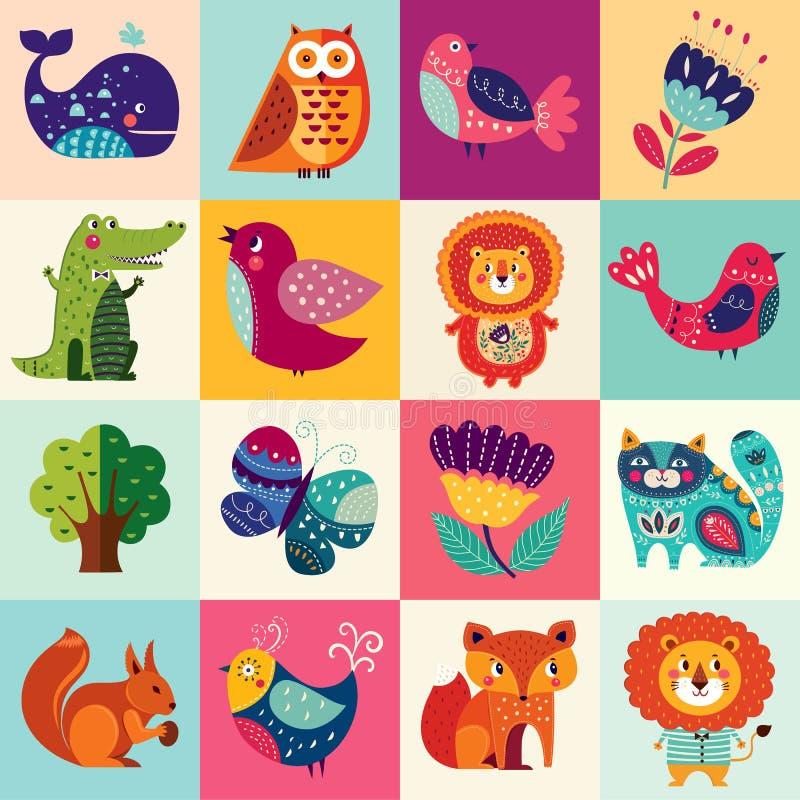 Colorful set vector illustration