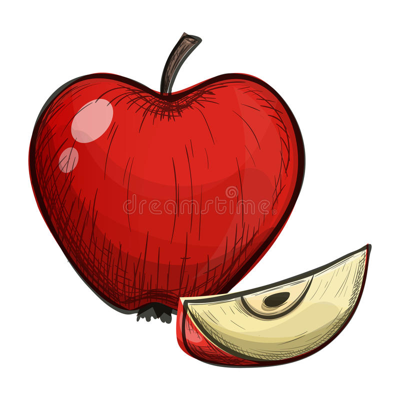 Colorful sketch of apple on a white background. Colorful sketch style cartoon illustration of apple on a white background. Vector vector illustration
