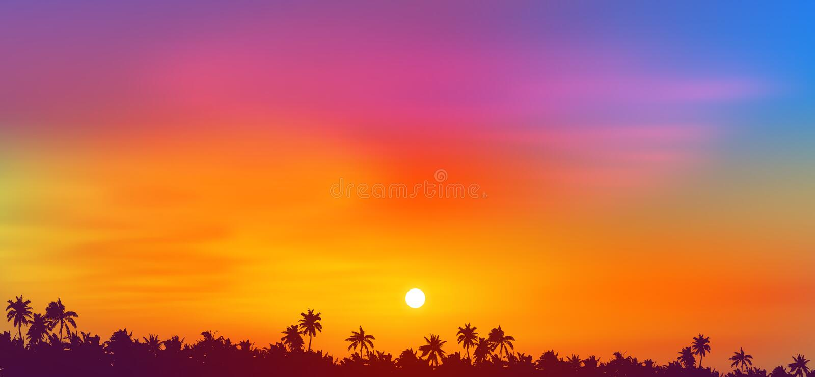 Colorful sky sunset view above tropical palm trees forest dark silhouette, vector illustration.  royalty free illustration