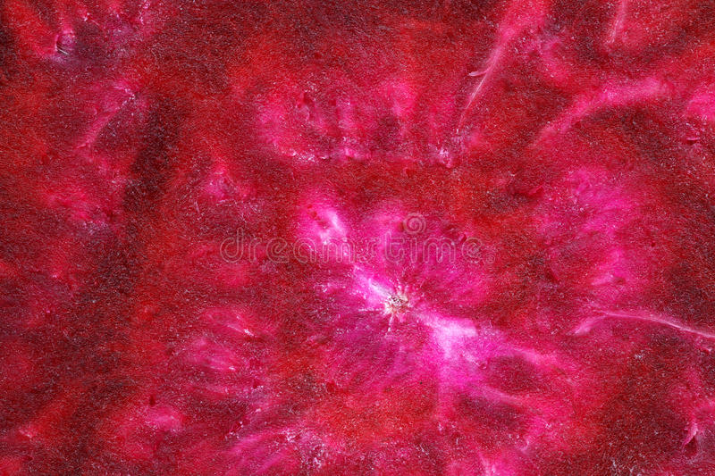 Download Colorful Sliced Deeply Purple Beetroot Half Stock Photo - Image of uncooked, sweet: 15251106