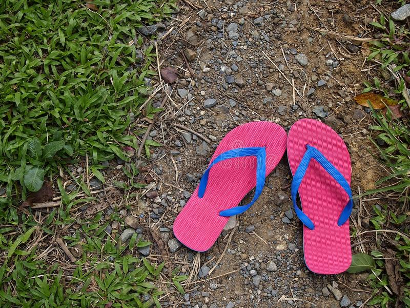 Colorful Slippers or Flip Flops. Photo of colorful rubber slippers or flip flops on fresh green grass stock photography