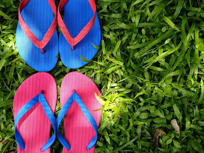 Colorful Slippers or Flip Flops. Photo of colorful rubber slippers or flip flops on fresh green grass royalty free stock image