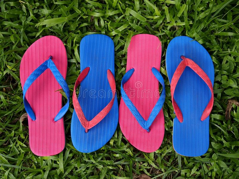 Colorful Slippers or Flip Flops. Photo of colorful rubber slippers or flip flops on fresh green grass stock photo