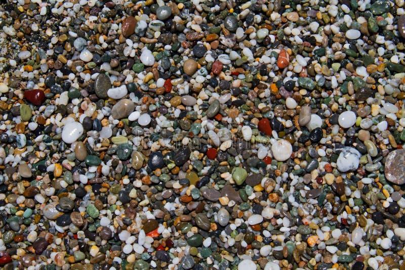 Pebbles on a shingle beach. Colorful small rounded wet pebbles on a shingle beach stock images