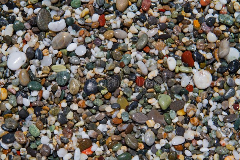 Pebbles on a shingle beach. Colorful small rounded wet pebbles on a shingle beach royalty free stock images