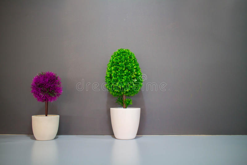 Colorful small tree in bathroom royalty free stock photo
