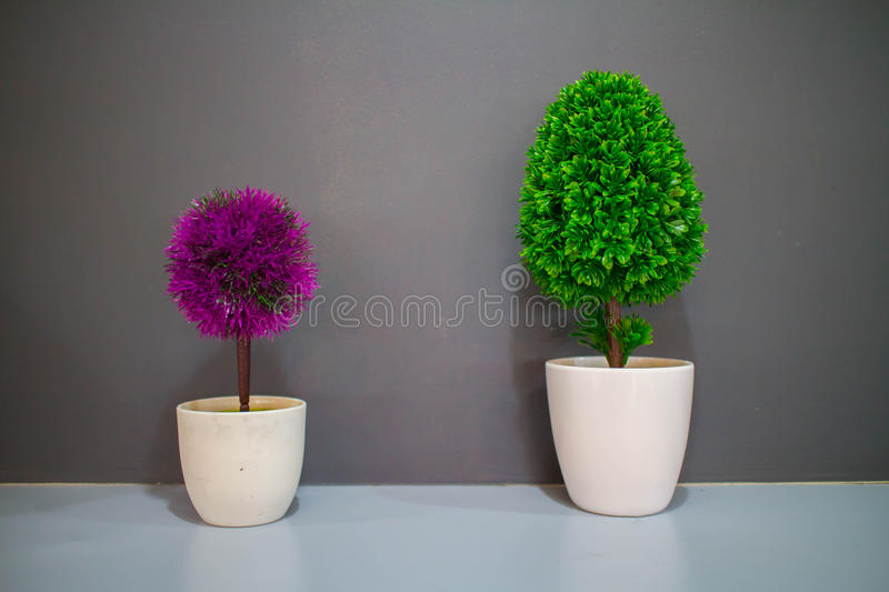 Colorful small tree in bathroom royalty free stock image