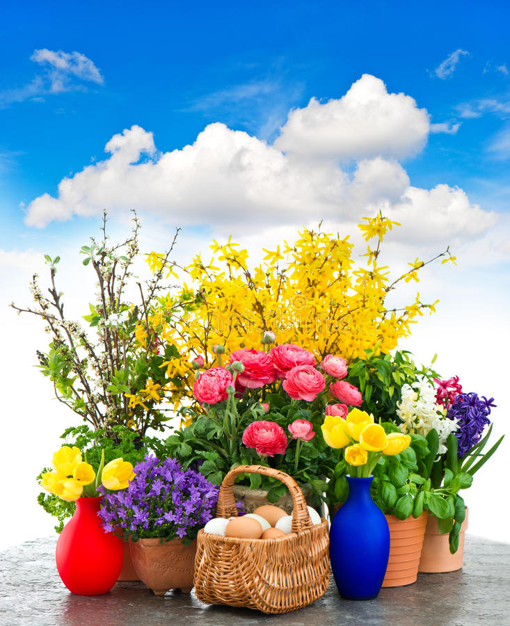 Colorful spring flowers and easter eggs decoration stock image