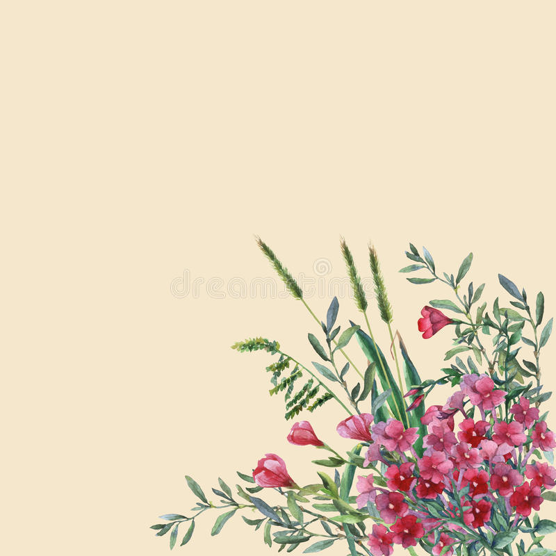 Colorful spring flowers and grass on a meadow. vector illustration