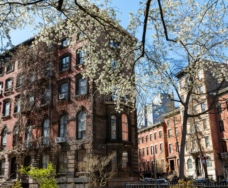 Colorful spring scene in the East Village of New York City with. Historic buildings on Stuyvesant Street stock image