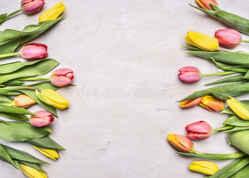 Colorful spring tulips lined frame with space for text wooden rustic background top view. Colorful spring tulips lined frame with space for text on wooden rustic stock image