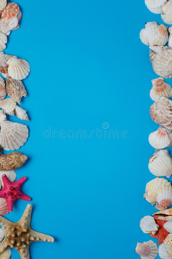 Colorful Starfish Ocean Seashell Nature Collection. Exotic Sea Conch Decorative Composition Summer Voyage Concept Azure Background. Seashore Clam Pattern stock photos