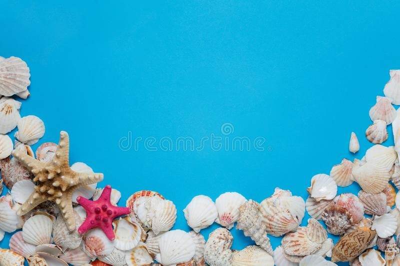 Colorful Starfish Ocean Seashell Nature Collection. Exotic Sea Conch Decorative Composition Summer Voyage Concept Azure Background. Seashore Clam Pattern royalty free stock images